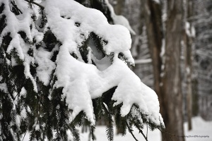 Dec. 29, 2012 2