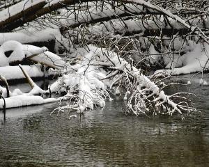 Dec. 29, 2012 6